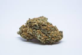 Black D.O.G Weed strain, Buy Marijuana online without prescription, best place to buy buds online without prescription, buy black dog weed online, black dog weed strain for sale online, buds for sale online, best cannabis strains online, cannabis for sale near me, where to buy marijuana online, 420 mail order, buy 420 bud,