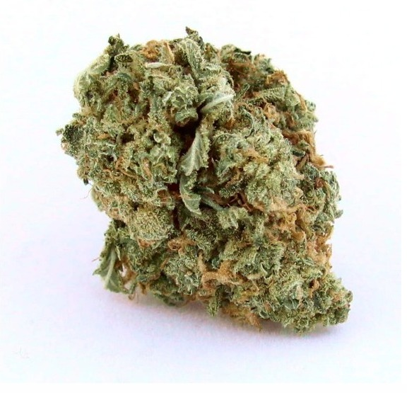 Blue Dream Marijuana, Blue Dream Weed, Buy Blue Dream Marijuana, Buy Blue Dream Marijuana Online, Buy Blue Dream Weed, Buy Blue Dream Weed India, Buy Blue Dream weed Online, Buy Blue Dream Weed UK, Buy Buy Blue Dream Weed In America, Buy Buy Blue Dream Weed In Australia, Buy Buy Blue Dream Weed In Austria, Buy Buy Blue Dream Weed In France, Buy Buy Blue Dream Weed In Germany, Buy Buy Blue Dream Weed In Hungary, Buy Buy Blue Dream Weed In Italy, Buy Buy Blue Dream Weed United Kingdom, Mail Order weed with Discreet Delivery Guarantee