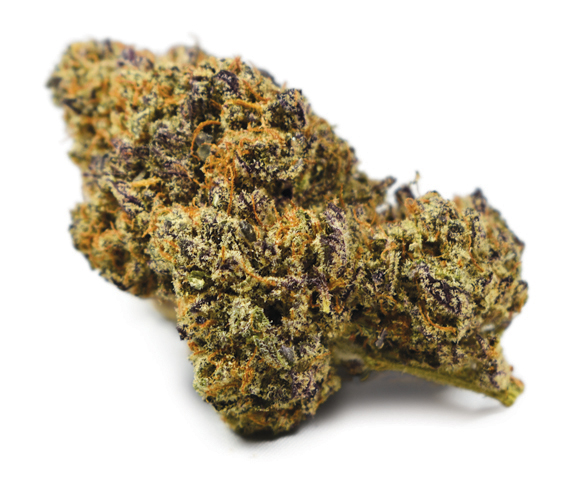 Best Weed Buy Bruce Banner 3, Buy Sunset Sherbet Oil Cartridge In Australia, Buy Sunset Sherbet Oil Cartridge In Austria, Buy Sunset Sherbet Oil Cartridge In France, Buy Sunset Sherbet Oil Cartridge In Germany, Buy Sunset Sherbet Oil Cartridge In Italy, Buy Sunset Sherbet Oil Cartridge In UK, Buy Sunset Sherbet Oil Cartridge In US, Hemp oil, hemp oil cancer, Hemp oil cures cancer, hemp oil for sale, How to make cannabis oil, How to make hash oil, Marijuana oil for sale, pre filled vape cartridges, prefilled hash oil cartridges for sale, pure cure cartridge, Rick Simpson hemp oil, Rick Simpson oil, THC oil for sale, vape cartridge refill, vape pen cartridge refill, vape pen cartridges for sale, vape pen cartridges wholesale, Weed For sale, where can i buy cannabis oil, Where to buy cannabis oil, weed candy for sale, weed dispensary toronto, weed distillate, weed edibles, weed edibles delivery, weed edibles for sale, weed edibles for sale online, weed edibles online, weed flower, weed for sale, weed for sale online, WEED FOR SALE ONLINE 420 MAIL ORDER, weed for sale online cheap, weed gummies for sale, weed online, weed online cheap, weed pen, weed seeds, weed shop online, weed websites to buy from, what are phoenix tears, what are sun rocks, what is budder, where can i buy afghan kush, where can i buy edibles, where can i buy marijuana, where can i buy marijuana online, where can i buy weed online, where can i get weed online, where did the term 420 come from, where to buy cannabis, where to buy dabs online, where to buy edibles, where to buy edibles online, where to buy marijuana online, where to buy shatter wax online, where to buy weed online, where to get edibles, where to get weed online, where to order weed online, white castle strain, your cannabis orders