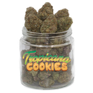 Buy Tropicana Cookies Weed Strain online Without Script, Buy Marijuana online, best cannabis strain, Tropicana cookies for sale online